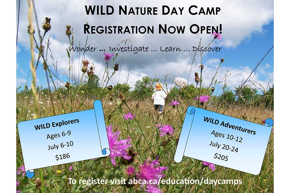 Summer_Nature_Day_Camp_2020_Web.jpg