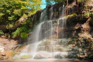 Find out about Rock Glen Conservation Area.