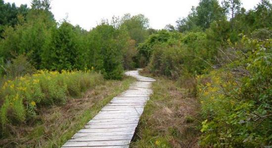 Visit a conservation area - visit healthyhikes.ca