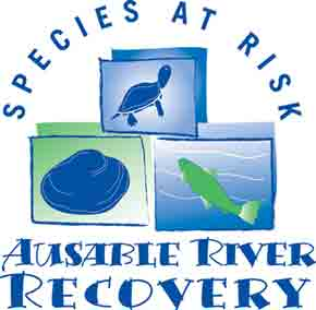 species at risk logo